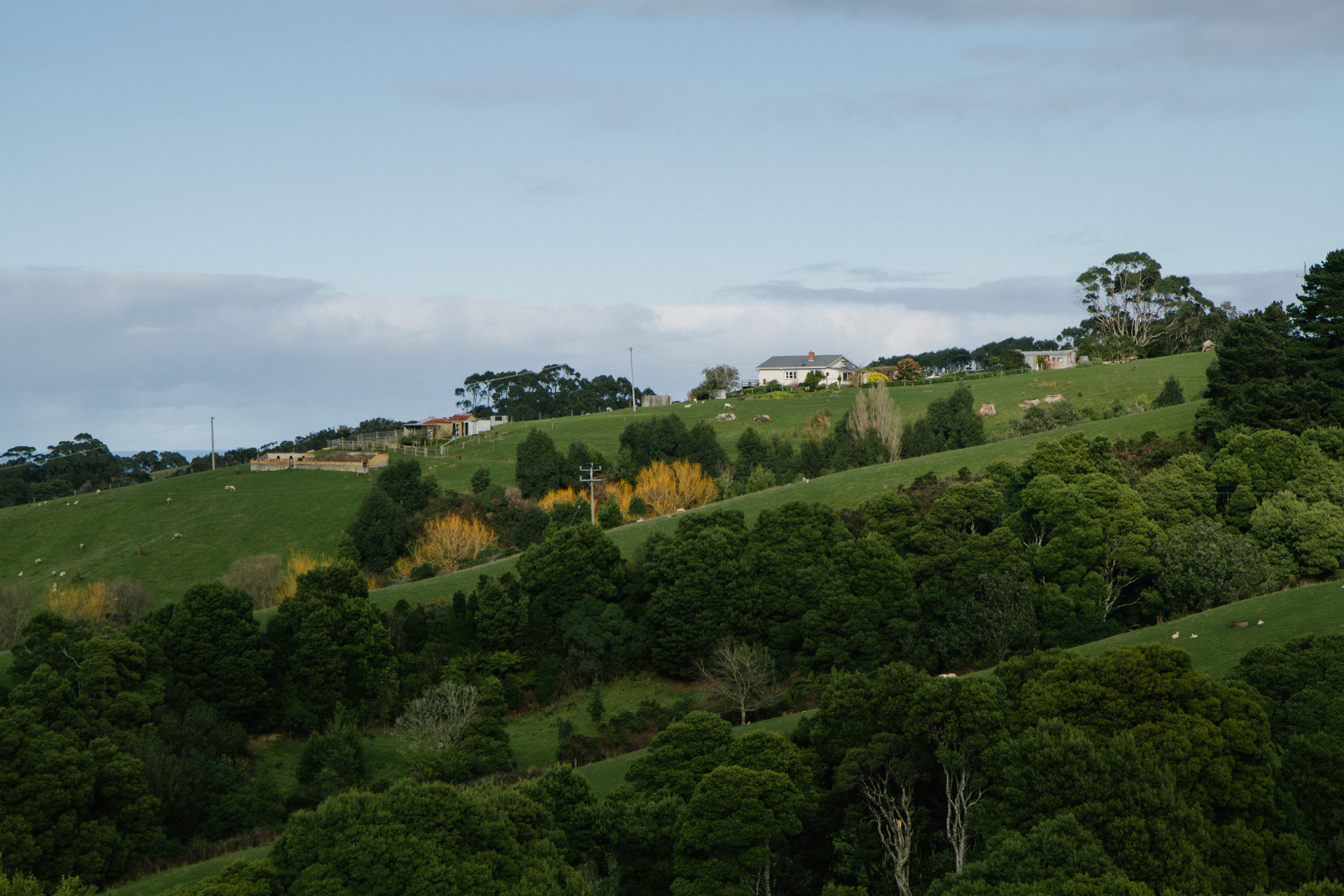 Yuulong Australia  city pictures gallery : View of rolling hills in Yuulong Victoria Australia